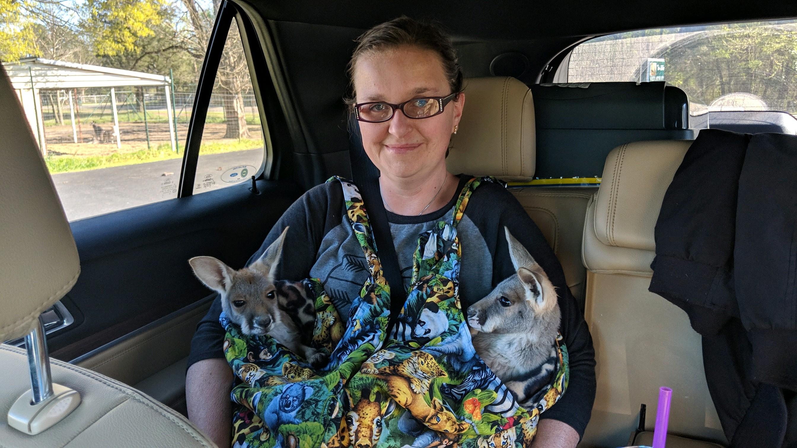 Meet our sweet kangaroo family