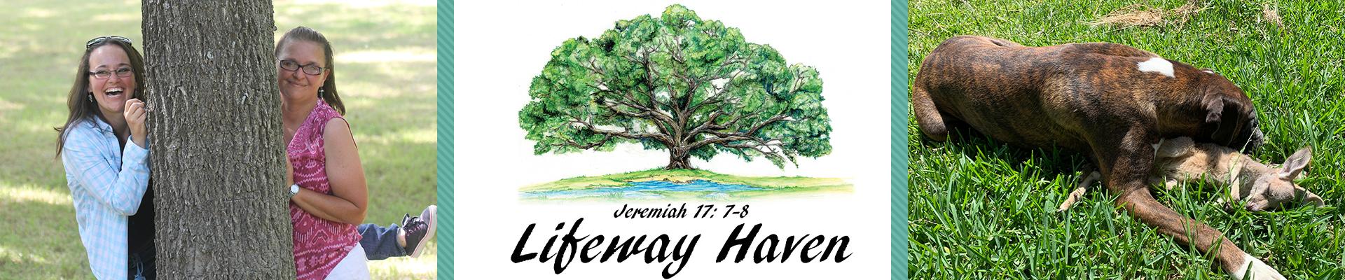 Lifeway Haven